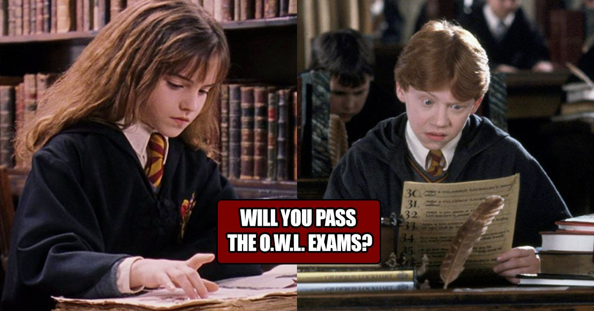 can you pass an o w l  exam from hogwarts