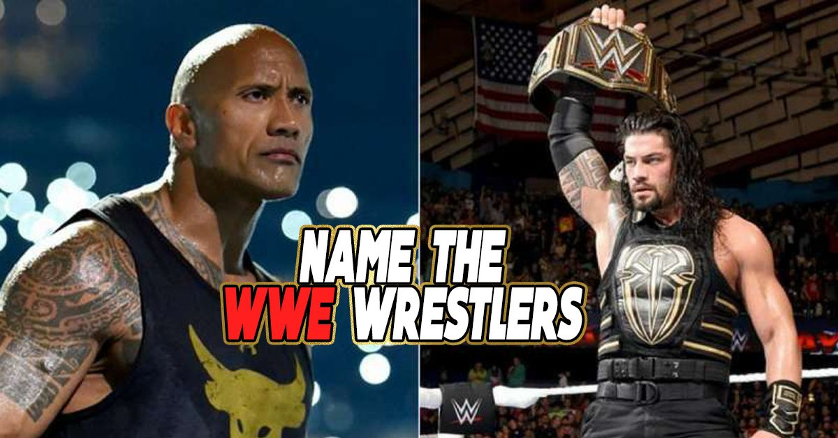 only a total fan can name 100  of these wwe fighters